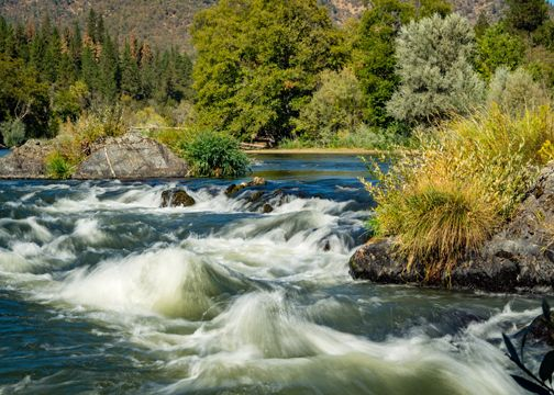 Oregon white water rafting locations