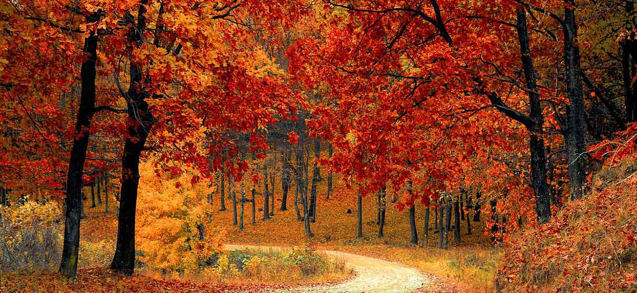 13 Spectacular Fall Camping Spots in the U.S.   Autumn in America